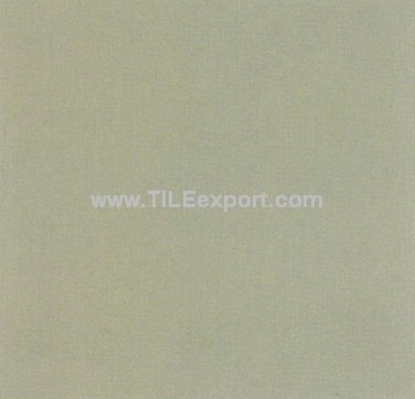 Floor_Tile--Paving_Tile,Supermarket_Tile,CH413