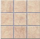 Wall_Tile_Rustic_Ceramic_Tile_1