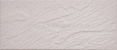 Exterior_Wall_Tile,112X255mm,RC1110