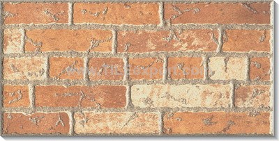 Exterior_Wall_Tile,200X400mm,L24102