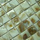 Mosaic--Conch_Shell,Color_List