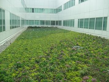 green roof design from greening-solution.com