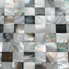 None_Gap_Joint_Mosaic,Mosaic--Conch_Shell